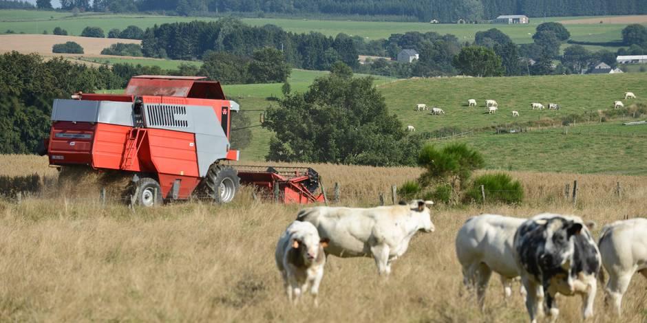 Pacte agricole : au delà des intentions, Pécresse ne rompt pas avec le modèle productiviste