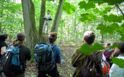 Suppressions de postes à l'Agence des espaces verts : Pécresse poursuit la casse des politiques environnementales régionales !